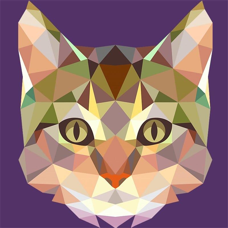 Polygon Cat Póló - Ha Cat rajongó ezeket a pólókat tuti imádni fogod!