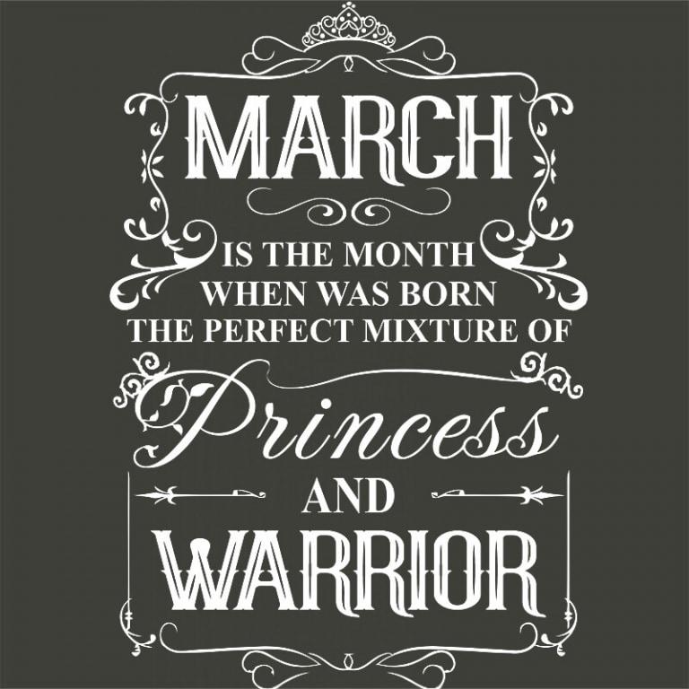 Princess Warrior March Póló - Ha Birthday rajongó ezeket a pólókat tuti imádni fogod!