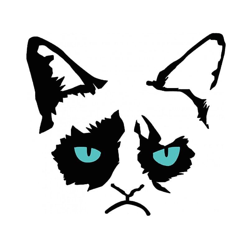 Grumpy Cat Eyes Póló - Ha Meme rajongó ezeket a pólókat tuti imádni fogod!